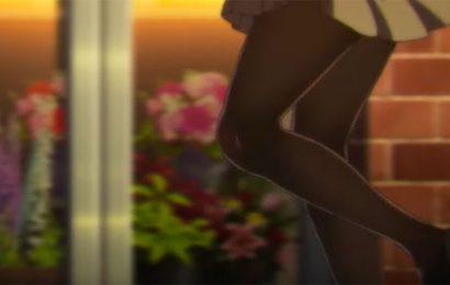 《絲襪視界》第四集圖集及概述